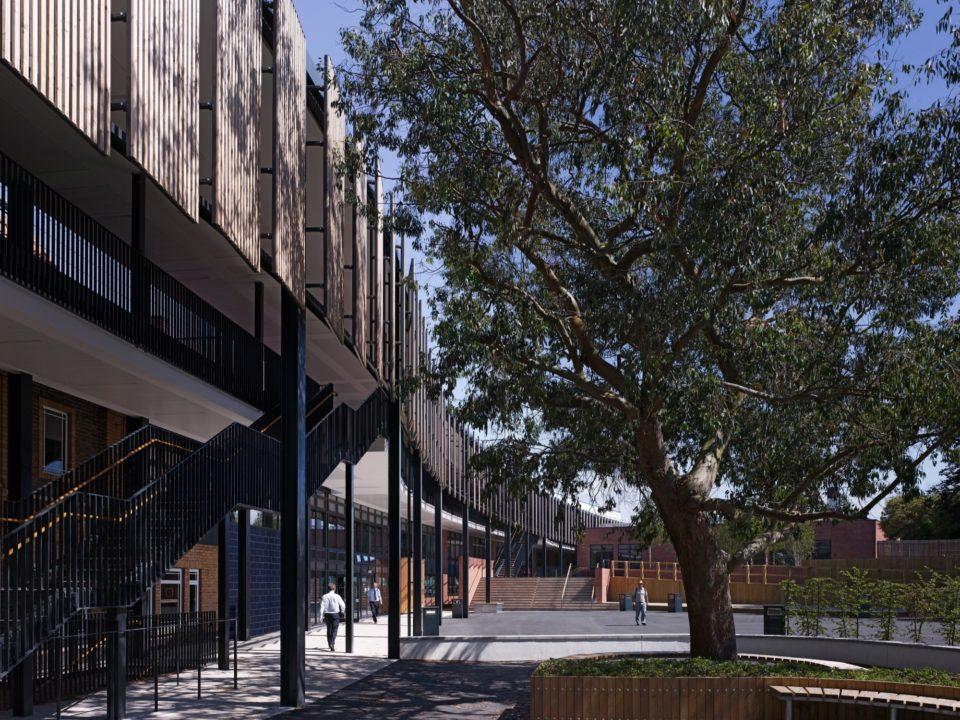 Cotham School